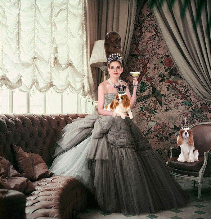 Tyne O'Connell in gorgeous grey ballgown spies & scribes
