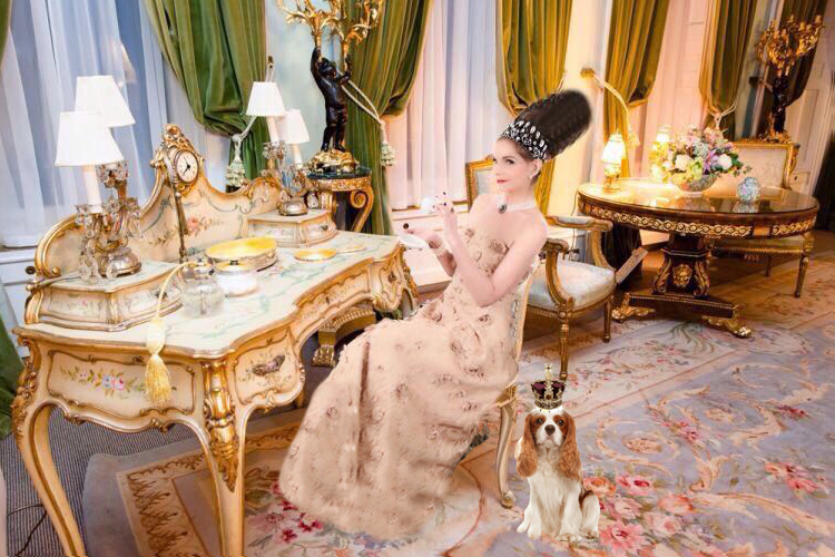 Tyne O'Connell at the Ritz in tiara with puppy
